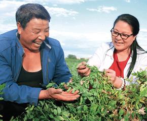 中国特色扶贫路